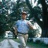 Still of Tom Hanks in Forrest Gump